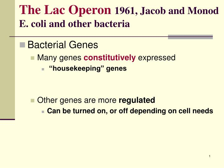 expression of lac operon under different conditions biology essay Prokaryotic gene expression www links with the above information, we can now predict the effect that various mutants will have on lac operon gene expression.