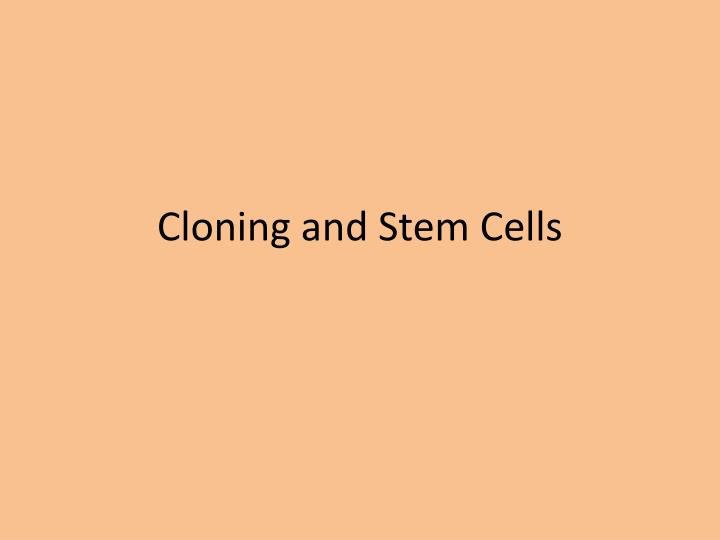 cloning and stem cells n.
