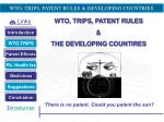 wto trips patent rules developing countries