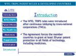 wto trips patent rules developing countries1