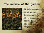 the miracle of the garden