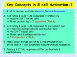 key concepts in b cell activation i