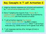 key concepts in t cell activation i