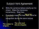 subject verb agreement8