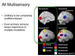 all multisensory
