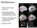 all multisensory2