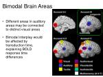 bimodal brain areas1
