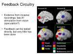 feedback circuitry1