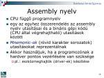 assembly nyelv
