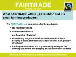 what fairtrade offers el guablo and it s small farming producers
