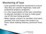 monitoring of loan