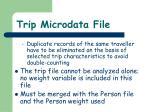trip microdata file2