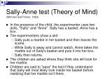 sally anne test theory of mind wimmer and perner 1983