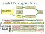 snowball extracting new tuples