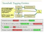 snowball tagging entities