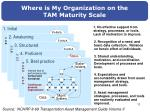 where is my organization on the tam maturity scale