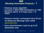 rip routing information protocol 1