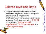 levde zay flama kay p