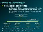 formas de organiza o2