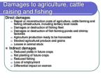 damages to agriculture cattle raising and fishing