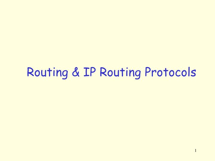 routing ip routing protocols n.