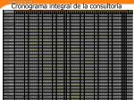 cronograma integral de la consultor a