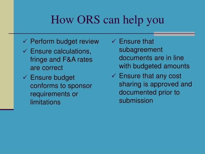 Perform budget review