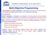 multi objective programming