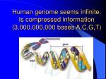 human genome seems infinite is compressed information 3 000 000 000 bases a c g t