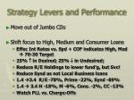 strategy levers and performance1