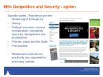 msc geopolitics and security option