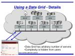 using a data grid details1