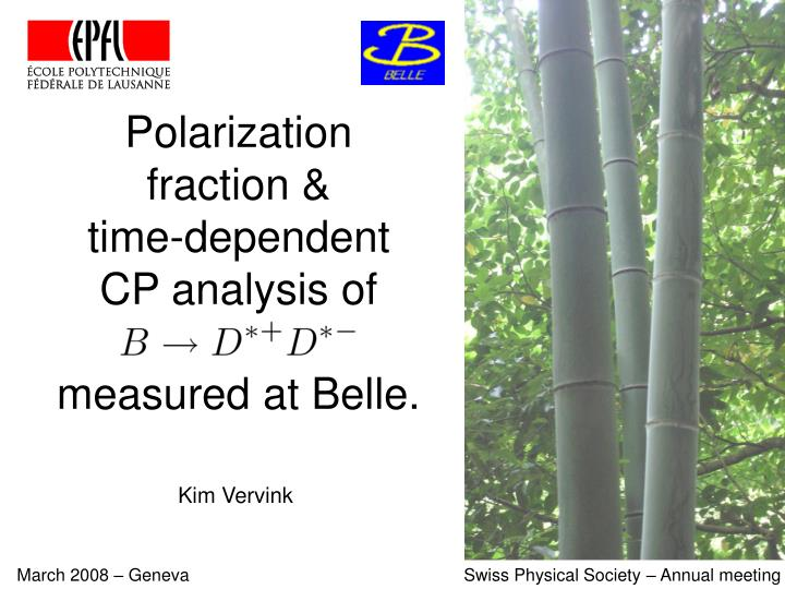 polarization fraction time dependent cp analysis of measured at belle n.