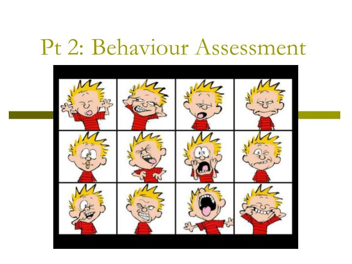 Pt 2 behaviour assessment