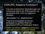 exkurs adaptive evolution4