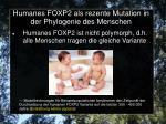 humanes foxp2 als rezente mutation in der phylogenie des menschen2