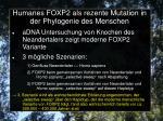 humanes foxp2 als rezente mutation in der phylogenie des menschen5