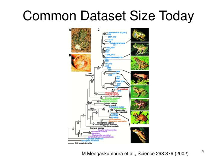 Common Dataset Size Today