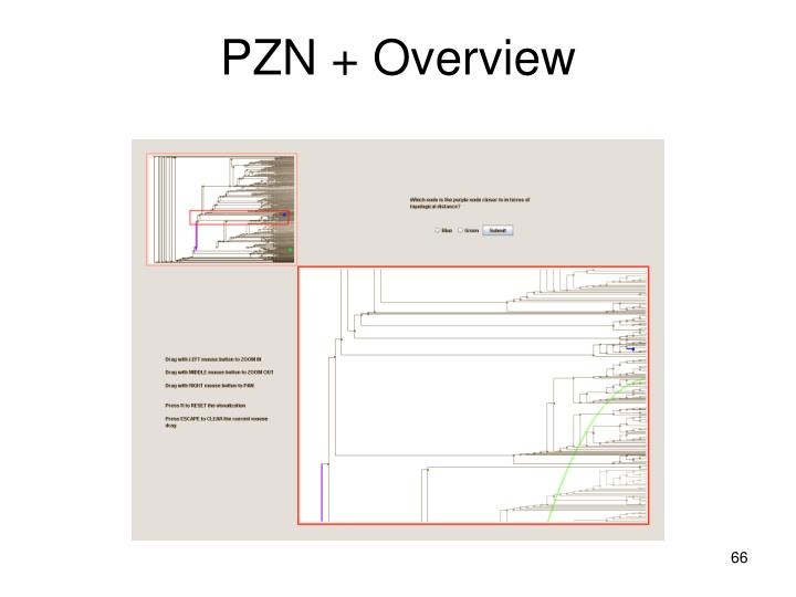 PZN + Overview