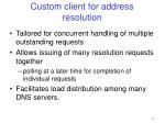 custom client for address resolution