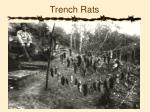 trench rats3