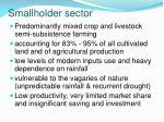 smallholder sector