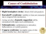 causes of confabulation