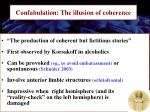 confabulation the illusion of coherence