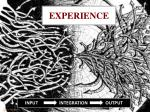 experience2