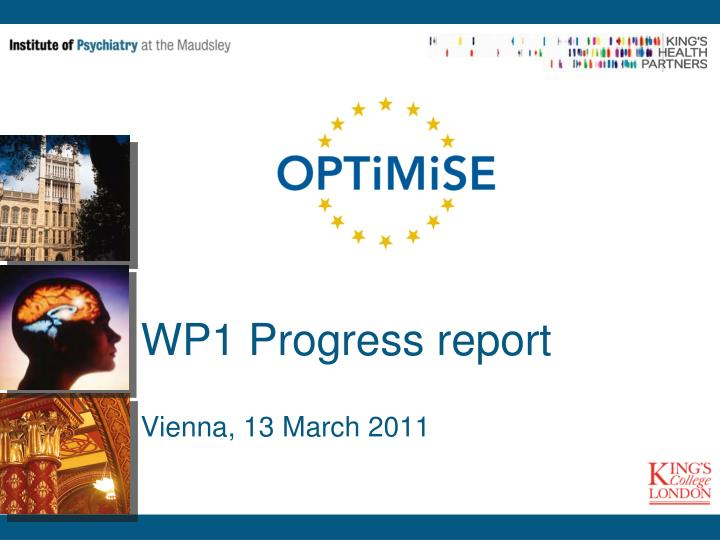 wp1 progress report vienna 13 march 2011 n.