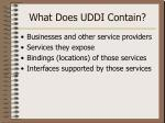 what does uddi contain