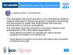 liberated learning consortium