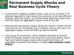 permanent supply shocks and real business cycle theory
