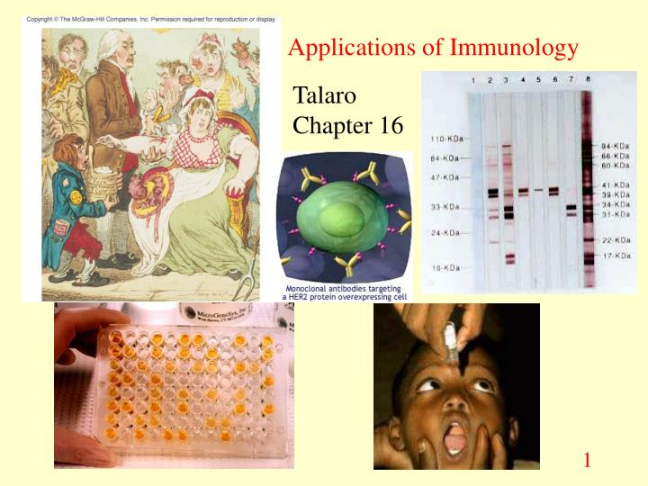 applications of immunology n.